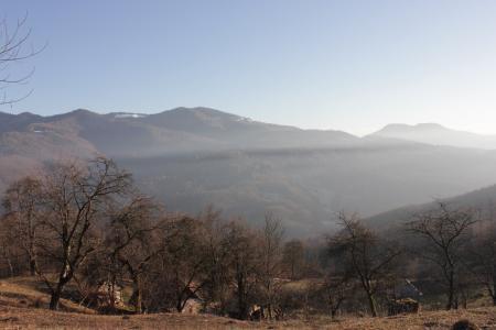 山,喀尔巴阡山脉,性质,生活