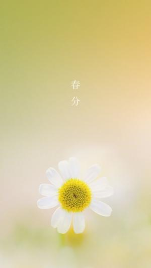 传统二十四节气之春分