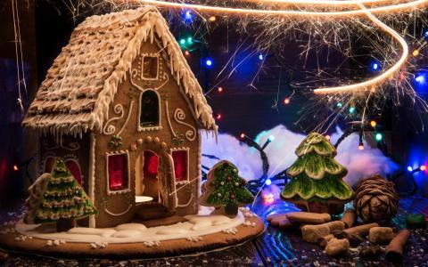 设计,圣诞节,烘烤,度假,新年,姜饼屋