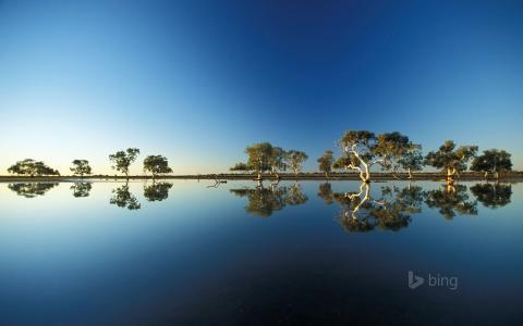 自然,湖,非洲,热带稀树草原,水,反射,美丽,亲照片,冰