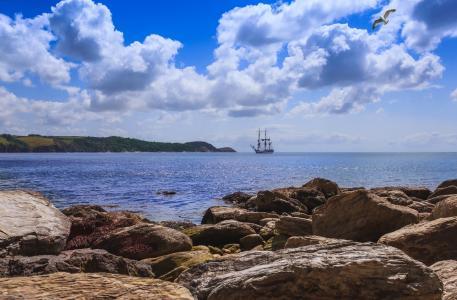海,天空,岸,帆船