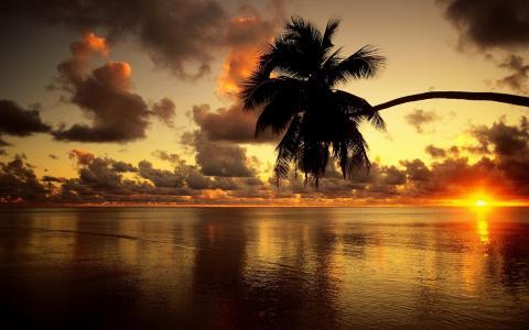 海洋,天空,云,卡尔马,日落