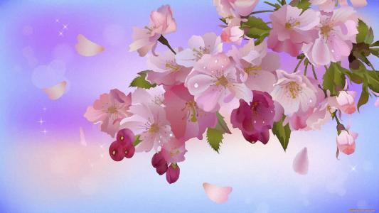 鲜花,分支,叶子,星星,芽,花瓣