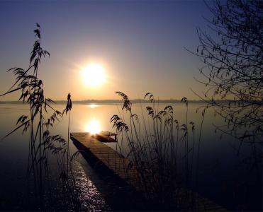 万里无云,太阳,芦苇,晚上,日落,湖,天空