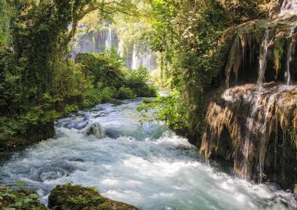 自然,瀑布,溪流,河流,丛林,森林,水