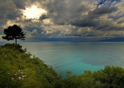 意大利那不勒斯海湾,那不勒斯海湾,意大利,云彩,木头,海岸