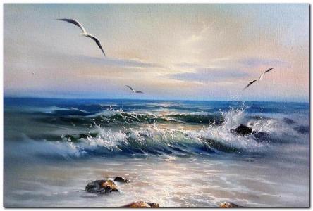 海景,波浪,海鸥,石头,天空