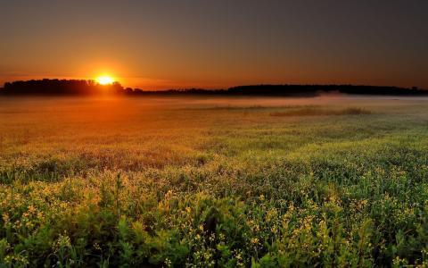 自然,日出,日落