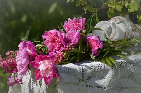 自然,夏天,表,桌布,鲜花,牡丹,水罐