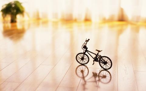 实木复合地板,花束,薄纱,微型自行车,美丽