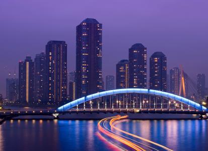 大都会,首都,摩天大楼,夜景,日本,东京