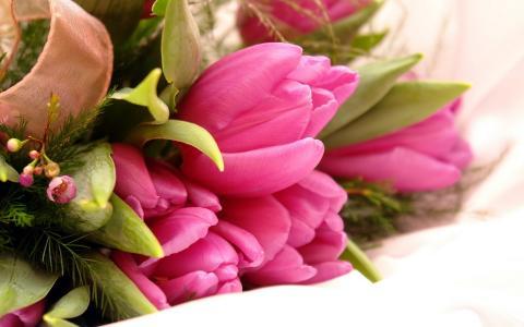 鲜花,花朵,叶子,郁金香,粉红色,花束