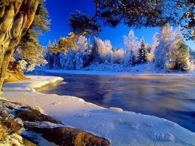 冬天,白霜,树木,河流