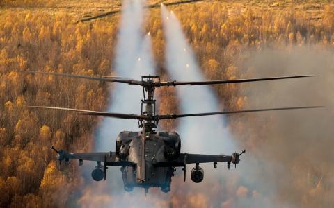直升机,行动,苍蝇