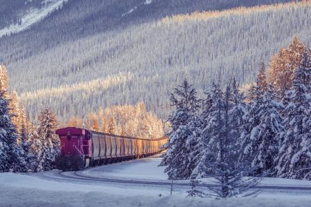 铁路,路,照片,山,冬季,森林,内燃机车,组成,美丽