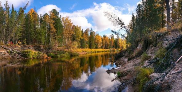 秋天,河,森林,景观,美丽