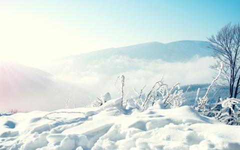 雪,冬天,山