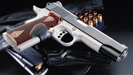 手枪,绯红色,武器,定制,金伯利,墨盒,皮套,携带ii