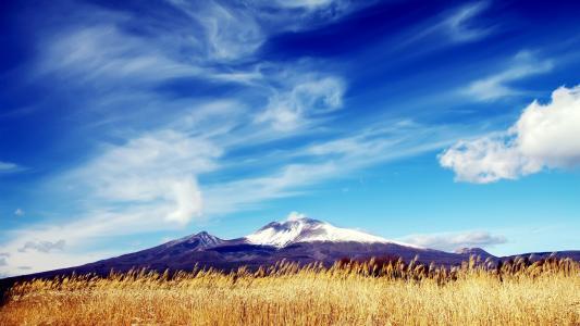 领域,耳朵,紫色山脉,多雪的山峰,蓝天