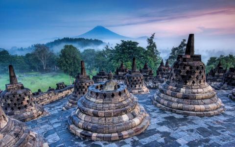 佛教,浅蓝色,树,黎明,绿色,草,雾,火山,印度尼西亚,小山,粉红色,日出