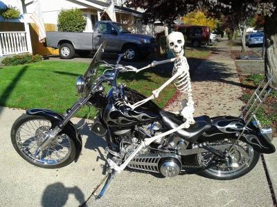 摩托车,幽默,骨架。