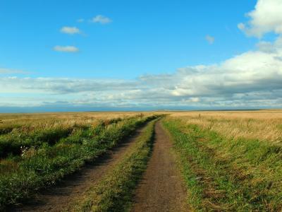 夏天,景观,哈萨克斯坦,道路,道路,草原,中央哈萨克斯坦,阿斯塔纳,远,天空