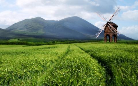 场,轧机,风,草,荷兰,山,云